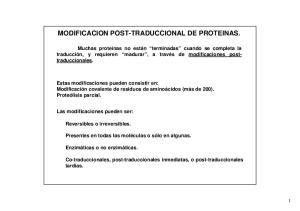 MODIFICACION POST-TRADUCCIONAL DE PROTEINAS