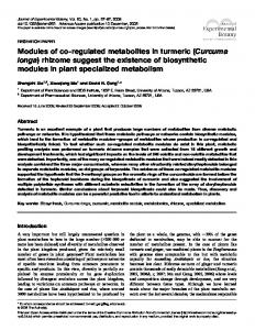 Modules of co-regulated metabolites in turmeric (Curcuma longa) rhizome suggest the existence of biosynthetic modules in plant specialized metabolism