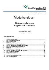 Modulhandbuch. Bachelorstudiengang Angewandte Informatik. Stand Oktober 2008