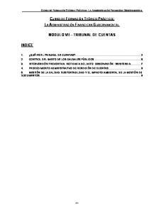 MODULO VII TRIBUNAL DE CUENTAS
