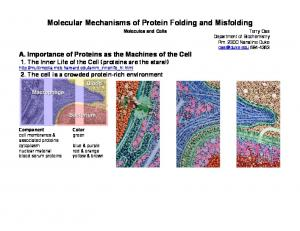 Molecular Mechanisms of Protein Folding and Misfolding