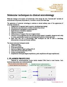 Molecular techniques in clinical microbiology