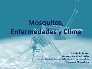 Mosquitos, Enfermedades y Clima