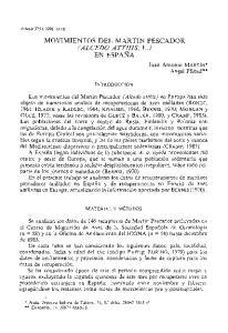 MOVIMIENTOS DEL MARTIN PESCADOR IALCEDO ATTHIS, L.)