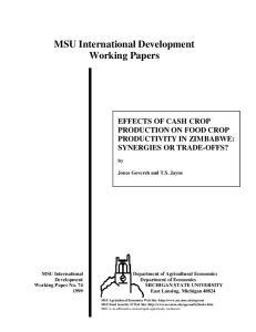 MSU International Development Working Papers