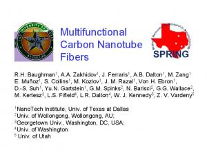 Multifunctional Carbon Nanotube Fibers