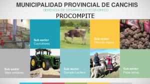 MUNICIPALIDAD PROVINCIAL DE CANCHIS GERENCIA DE DESARROLLO ECONOMICO PROCOMPITE