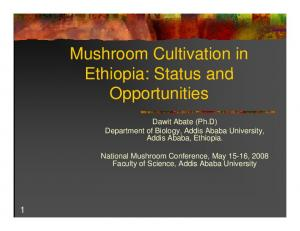 Mushroom Cultivation in