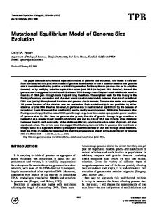 Mutational Equilibrium Model of Genome Size Evolution