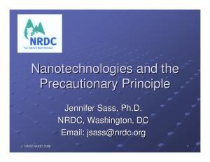 Nanotechnologies and the Precautionary Principle