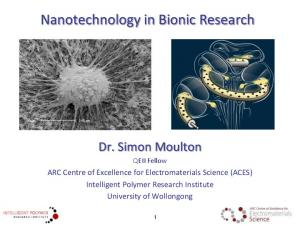 Nanotechnology in Bionic Research