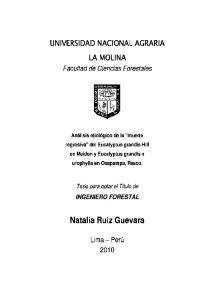 Natalia Ruiz Guevara
