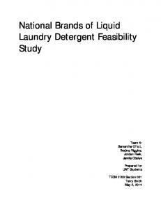 National Brands of Liquid Laundry Detergent Feasibility Study