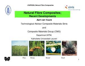 Natural Fibre Composites; Recent Developments