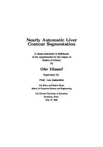Nearly Automatic Liver Contour Segmentation