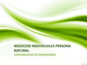 NEGOCIOS INDIVIDUALES PERSONA NATURAL CONTABILIDAD DE PATRIMONIO