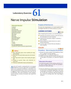 Nerve Impulse Stimulation