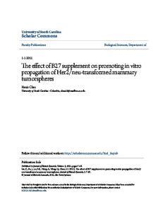 neu-transformed mammary tumorspheres