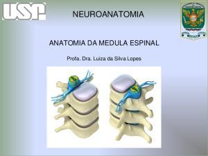 NEUROANATOMIA ANATOMIA DA MEDULA ESPINAL. Profa. Dra. Luiza da Silva Lopes