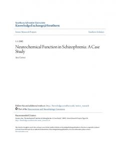 Neurochemical Function in Schizophrenia: A Case Study