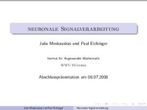 Neuronale Signalverarbeitung