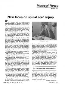 New focus on spinal cord injury