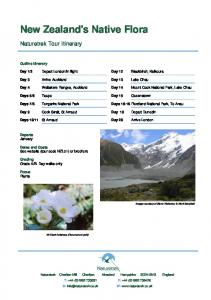 New Zealand's Native Flora