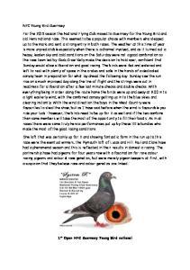 NFC Young Bird Guernsey