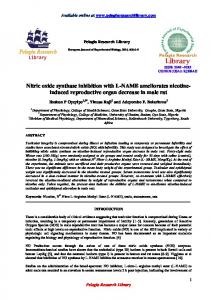 Nitric oxide synthase inhibition with L-NAME ameliorates nicotineinduced reproductive organ decrease in male rat