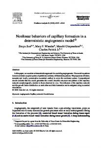 Nonlinear behaviors of capillary formation in a deterministic angiogenesis model