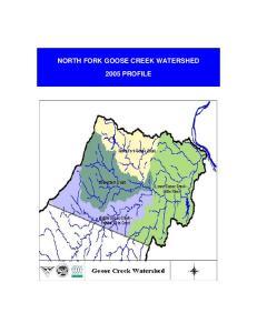 NORTH FORK GOOSE CREEK WATERSHED 2005 PROFILE