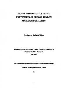 NOVEL THERAPEUTICS IN THE PREVENTION OF FLEXOR TENDON ADHESION FORMATION. Benjamin Robert Klass