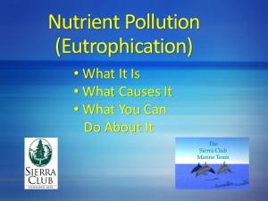 Nutrient Pollution (Eutrophication) What It Is What Causes It What You Can Do About It