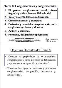 Objetivos Docentes del Tema 8: