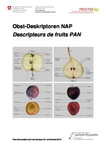 Obst-Deskriptoren NAP Descripteurs de fruits PAN