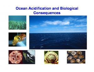 Ocean Acidification and Biological Consequences