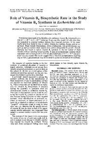 of Vitamin B6 Synthesis in Escherichia coli