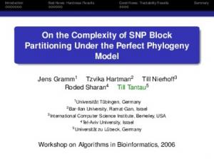 On the Complexity of SNP Block Partitioning Under the Perfect Phylogeny Model
