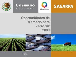 Oportunidades de Mercado para Veracruz