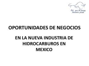 OPORTUNIDADES DE NEGOCIOS EN LA NUEVA INDUSTRIA DE HIDROCARBUROS EN MEXICO