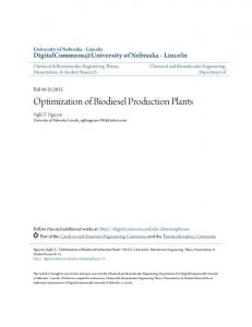 Optimization of Biodiesel Production Plants