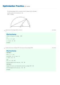 Optimization Practice [83 marks]