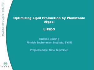 Optimizing Lipid Production by Planktonic Algae: LIPIDO