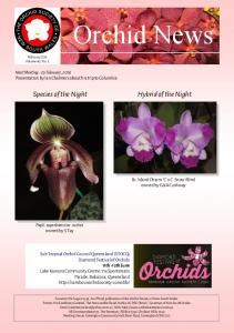 Orchid News February 2016