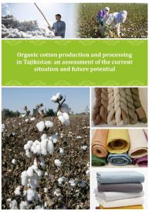 Organic cotton production and processing in Tajikistan: an assessment of the current situation and future potential