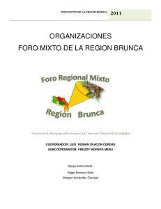 ORGANIZACIONES FORO MIXTO DE LA REGION BRUNCA