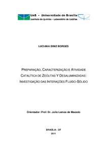 Orientador: Prof. Dr. Julio Lemos de Macedo
