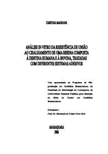 Orientador: Prof. Dr. Sizenando de Toledo Porto Neto