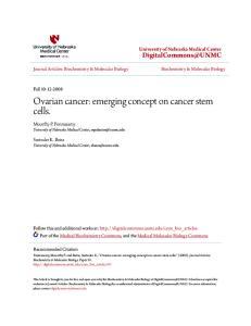 Ovarian cancer: emerging concept on cancer stem cells