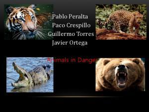 Pablo Peralta Paco Crespillo Guillermo Torres Javier Ortega. Animals in Danger